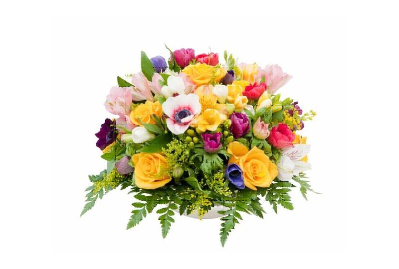 kwiaty-logo