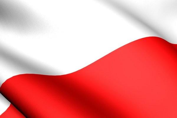 flaga-logo