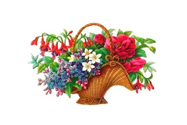 kosz-kwiatow-logo